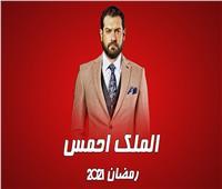 عمرو يوسف يبدأ معركة تحرير مصر