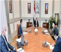 الرئيس السيسي يوجه بتطوير آليات عمل صندوق تكريم الشهداء