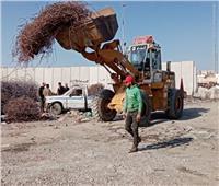 استمرار الاستعدادات لافتتاح الميناء البري الجديد ببورسعيد