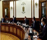 إنفوجراف  مركز معلومات مجلس الوزراء يعرض أكبر شركاء مصر التجاريين في 2020