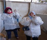محافظة القاهرة تشكل لجنة لتحصين ماشية مزرعة كلية الزراعة بـ«الأزهر»