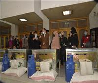 محافظ أسيوط يسلم 13 ماكينة خياطة و4 أفران منزلية للمرأة المعيلة