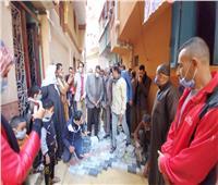 محافظ البحيرة يتفقد مبادرة تجميل شوارع قرية سرنباى بالمحمودية