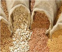 الزراعة: فحص 366 رسالة تقاوي وبذور محاصيل مستوردة