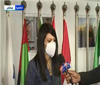 المشاط: دشنا موقع إلكتروني لعرض علاقات مصر بشركائها التنمويين  فيديو
