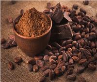 دراسة: مضادات الأكسدة في الكاكاو تعزز ذاكرة كبار السن