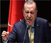 وثيقة استخباراتية: أردوغان «متهم» بنشر التطرف في هولندا