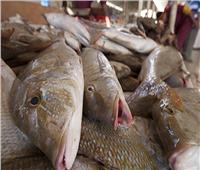 أسعار الأسماك في سوق العبور اليوم 18 فبراير