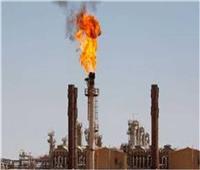 فيديو  البترول توضح تفاصيل تصدير شحنة من الغاز المسال إلى أوروبا