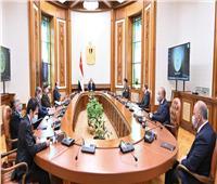 """بحضور شركات عالمية.. اجتماع مهم لـ""""السيسي"""" حول زراعة شمال ووسط سيناء"""