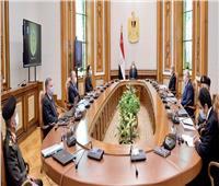 الرئيس السيسي يوجه بمواصلة خطة الدولة للنهوض بمنظومة القطن المصري