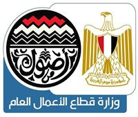 وزارة قطاع الأعمال تكشف حقيقة البدء في تطوير فندق شبرد