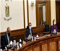 مدبولي: نشجع القطاع الخاص علىالمساهمة في توفير اللقاحات للعاملين به