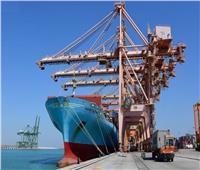 الإمارات والهند يبحثان تعزيز العلاقات وجهود مكافحة كورونا