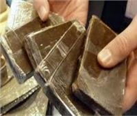 إحالة عاطلين للجنايات لقيامهم بالاتجار في المواد المخدرة بالوايلي