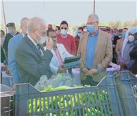 وزير الزراعة ومحافظ جنوب سيناء يتفقدان المجزر الآلي ومعصرة الزيتون