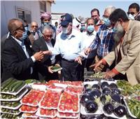 «القصير»: ندعم التنمية الزراعية وتشجيع الاستثمار بجنوب سيناء
