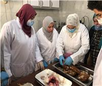 «الزراعة» تختتم دورة معهد صحة الحيوان حول تشخيص أمراض الدواجن