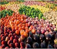 بزيادة 5%.. الزراعة تعلن تصدير مليون طن محاصيل زراعية خلال شهرين