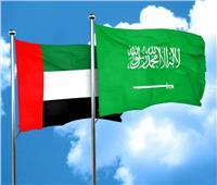 الإمارات: أي خطر يواجه السعودية يعد تهديدا لمنظومة الأمن لدينا