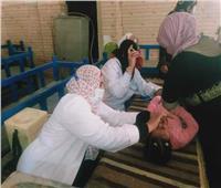 لليوم الثاني.. حملة التطعيم ضد شلل الأطفال تواصل عملها في المنيا