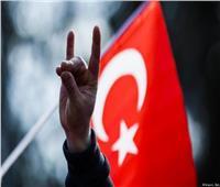 خبير أمريكي يحذر: تحالف أردوغان مع «الذئاب الرمادية» خلطة سامة