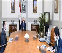 السيسي يوجه بتعزيز التعاون التنموي مع الجهات الدولية لدعم تطوير الريف المصري