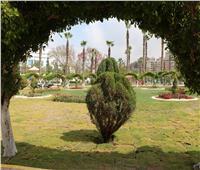 بعد وصفها بـ«رئة القاهرة الجديدة».. 9 معلومات عن حديقة الطفل