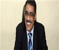 «الاستعلامات»: 1500 مراسل أجنبي في مصر يتمتعون بحرية كاملة في أداء عملهم