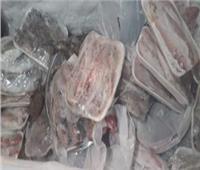 الأمن يضبط صاحب ثلاجة بـ«نصف طن» لحوم فاسدة في القاهرة