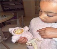 بالصور.. حيوان غريب مع ابنة كيم كارداشيان