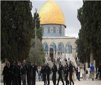 36 مستوطنا يقتحمون باحة المسجد الأقصى