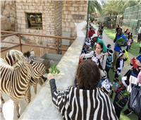 «المركزية»: إيراد حديقة الحيوان مليون و200 ألف جنيه والتذكرة بـ 5 جنيهات