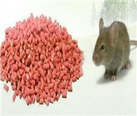 لحماية أسرتك.. نصائح قبل استخدام سم الفئران في المنزل