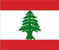 الملحق اللبناني يُشيد بتطوير شبكة كهرباء مصر ويدعو بنقل التجربة لبلاده
