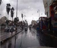 «شبورة وأمطار خفيفة».. خريطة الظواهر الجوية من الاثنين للسبت