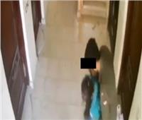 بعد هروب ٤ شهور.. مباحث العاصمة تضبط المتحرش بـ «طفلة بدر»