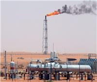 فيديو  خبير: مصر فى طريقها لتحقيق الاكتفاء الذاتي من المنتجات البترولية