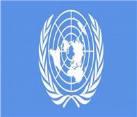 الأمم المتحدة تطلق نداء استغاثة لإنقاذ اليمن من المجاعة