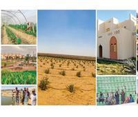خضر: ضرورة الاعتماد على التصنيع المحلي في تطوير الريف المصري