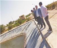 شمال سيناء في أسبوع: إنتاج الأسماك والأغنام بـ«الريموت كنترول»  صور