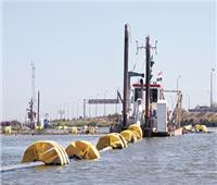 بحيرات مصر | مريوط تتخلص من الملوثات
