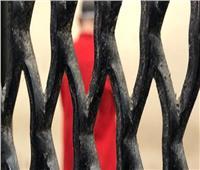 الجنايات تسدل الستار في قضية «سفاح الجيزة» وتقضي بإعدامه «شنقًا»