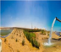 «الريف المصري» تطالب المنتفعين بأراضي الـ1.5 مليون فدان إنهاء ترخيص الآبار