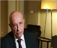 رئيس النواب الليبي: نسعى لإيجاد الإطار الدستوري والقانوني لإجراء الانتخابات