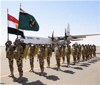 «نسور النيل 2».. أنشطة مكثفة للتدريب الجوي المصري السوداني المشترك  صور