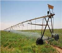خبير اقتصادي: 10 ملايين فرصة عمل توفرها مشروعات السيسي الزراعية