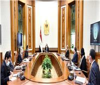 الرئيس السيسي يوجه بتوفير المناخ الداعم لتطوير صناعة الأسمنت والحديد