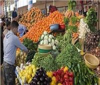 شعبة الخضروات والفاكهة: زيادة السلع المعروضة استعداد لشهر رمضان | فيديو