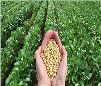 فوائد «الزراعة العضوية»بعد صدور اللائحة التنفيذية للقانون